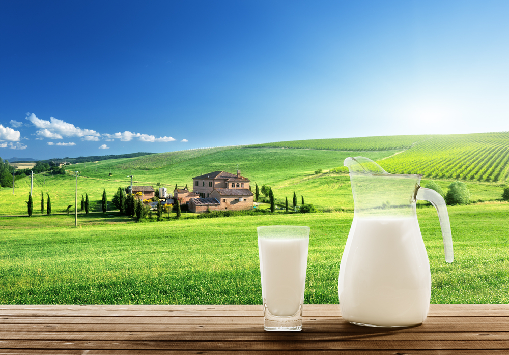 Lactose Intolerance vs Milk Allergy: How to Tell the Difference