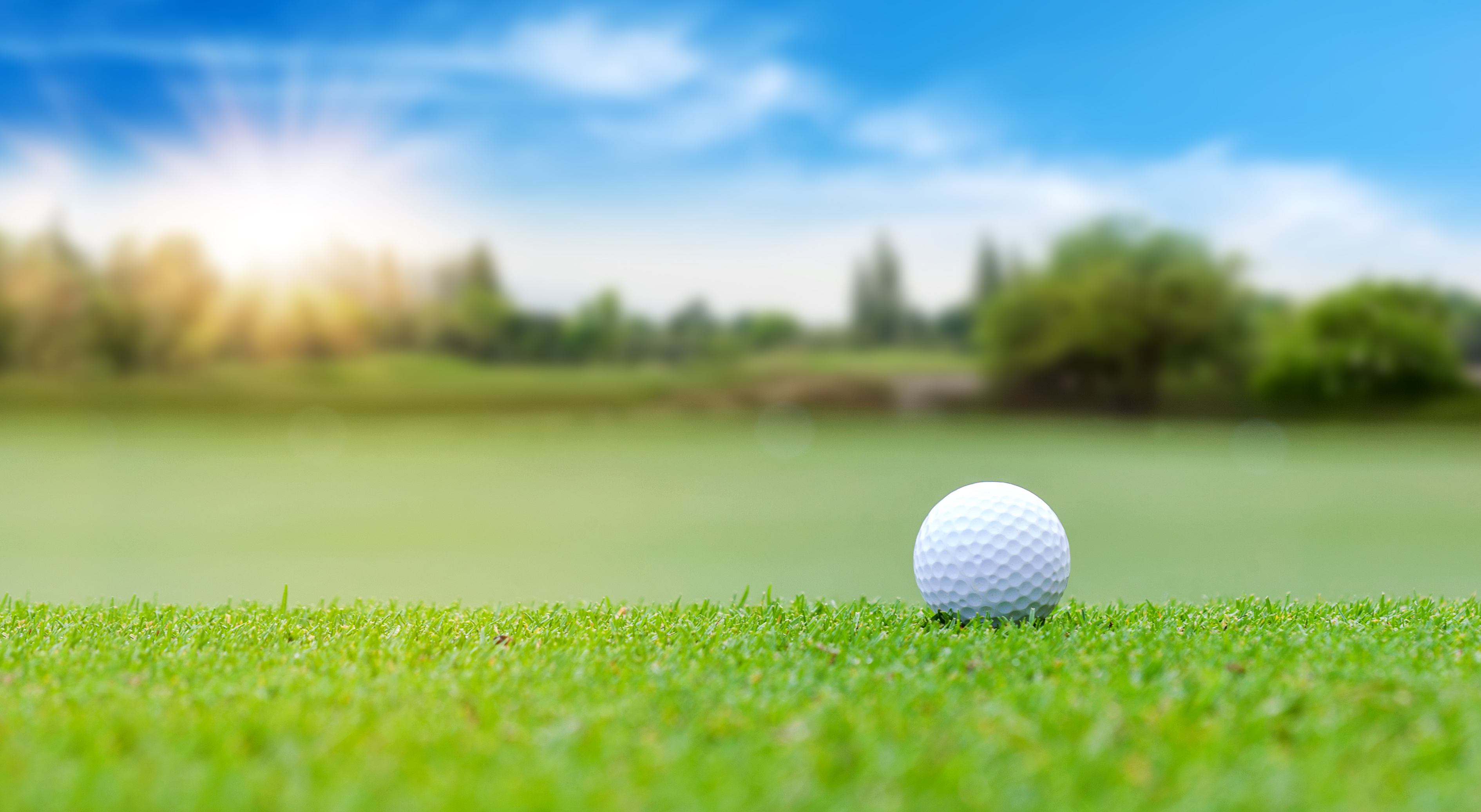Lane Foundation Schedules Annual Golf Tournament