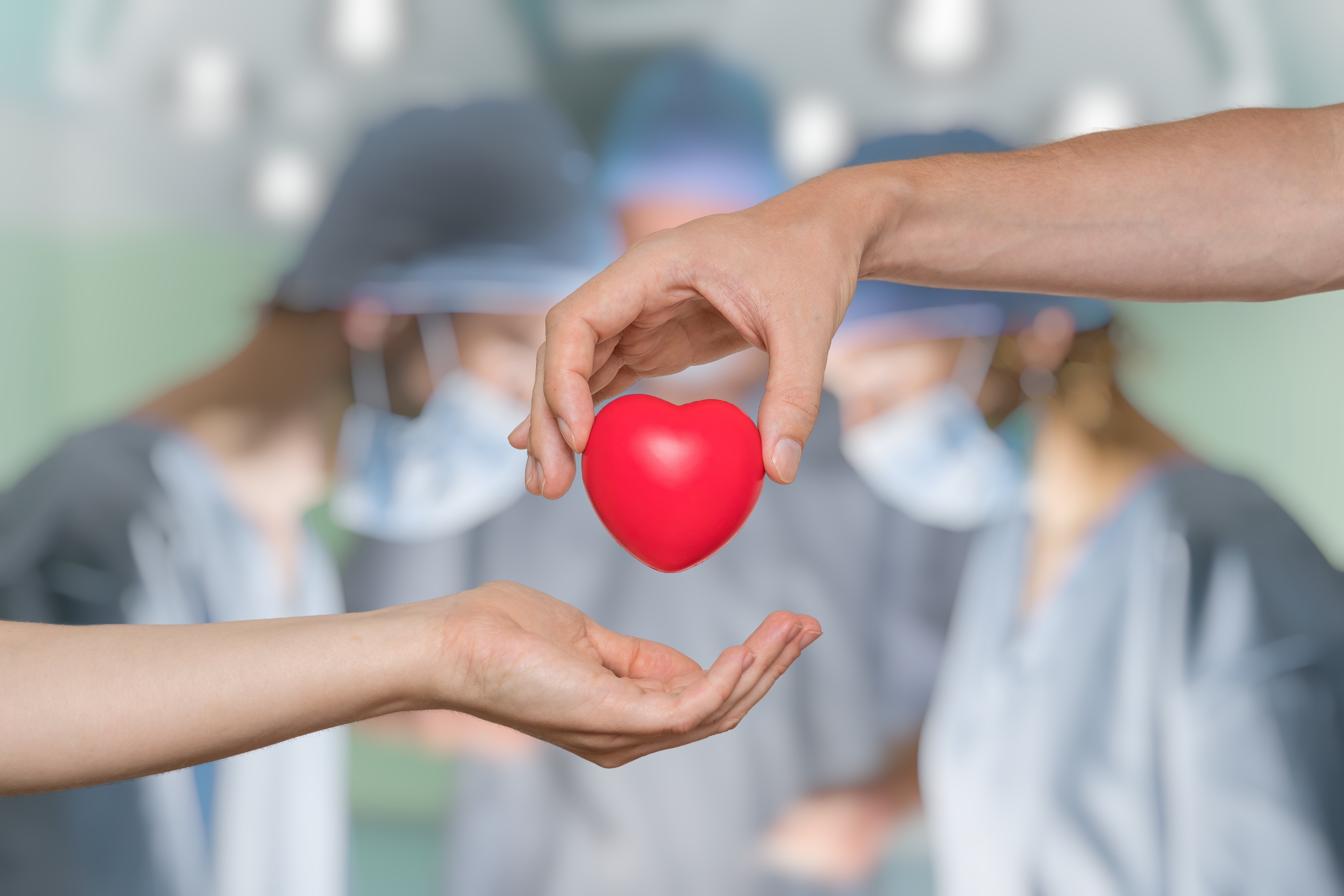 Here is Why You Should be an Organ Donor
